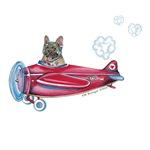 Valentine Airplane (BM Fawn)