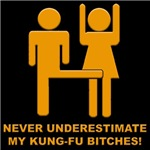 Never Underestimate My Kung-Fu
