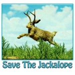 Save The Jackalope