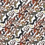 Butterflies of Maine Pattern