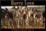 Burro Town