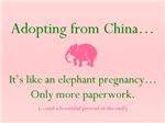 Elephant Pregnancy