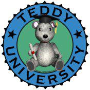Teddy University