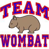 Team Wombat VI