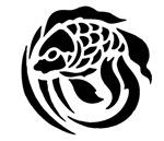 Black Fish Design