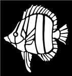 White Tropical Fish