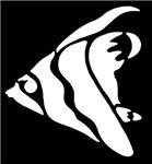White Angel Fish