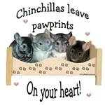 Chin Pawprints