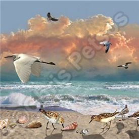 Beach Scene with Birds