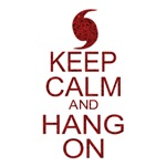 Hurricane Irene Keep Calm and Hang On (parody)