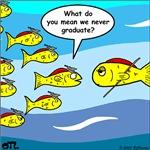 Fish Graduation