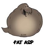 Fat Asp