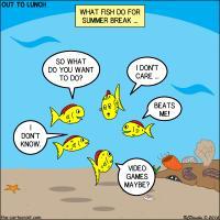Fish Summer Break