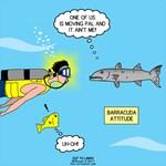 Barracuda Attitude