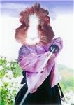 Samurai Guinea Pig