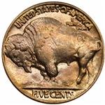 Buffalo Nickel on White