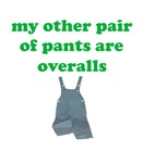 My other pair of pants are overalls