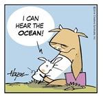 Rory Hears the Ocean.