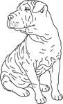 Shar Pei Line Drawing