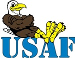 USAF Easygoing Eagle