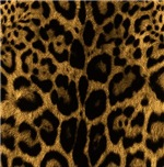 Jaguar Print Gifts