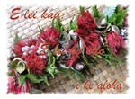 La Nui (Holiday)