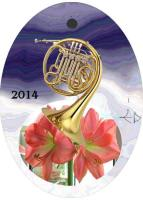 2014 Musical Instrument Ornaments