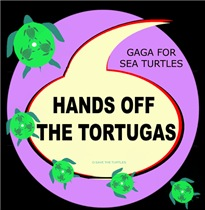 HANDS OF THE TORTUGAS ( SEA TURTLES)