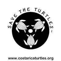 Men's Turtle T- shirts