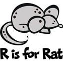 R is for Rat