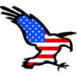 American Eagle Merchandise