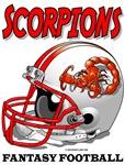 FFL Scorpions Helmets