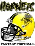 FFL Hornets Helmet