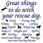 Great Dog Activities