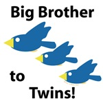 Big Brother to Twins!