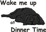 Wake Up for Dinner
