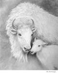 White Buffalo and Calf by Marc Brinkerhoff