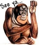 Monkey See Ya