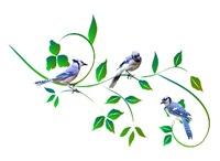 <b>BLUE JAYS</b>