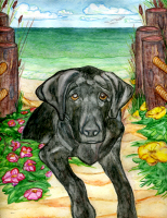 Please Click Here to See Black Labrador Items.