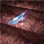 The Little Glass Slipper