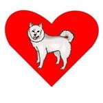 American Eskimo Heart