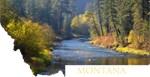 Montana- River in Autumn