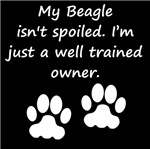 Well Trained Beagle Owner