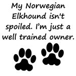 Well Trained Norwegian Elkhound Owner