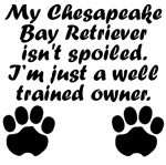 Well Trained Chesapeake Bay Retriever Owner