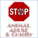 Stop Animal Abuse & Cruelty