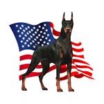 American Flag Doberman