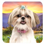 Shih Tzu Meadow