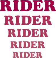 Amusement Park 'Rides' Rider